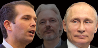 Trump Jr, Putin, and Assange