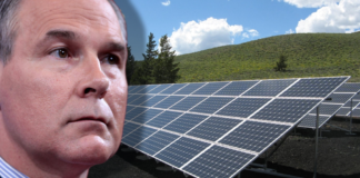 Scott Pruitt with solar energy