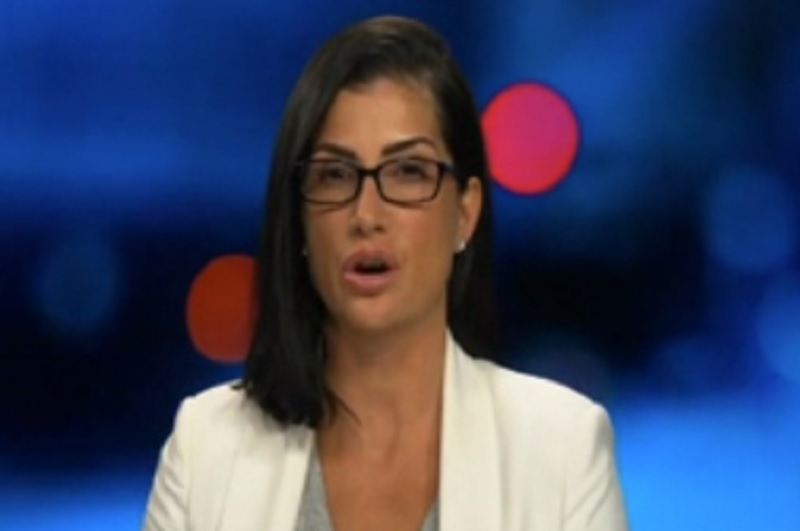NRA spox Dana Loesch just lied about a bill that prevents violent criminals from lining her boss's pockets with cash