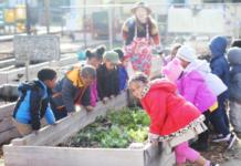preschool produce stand
